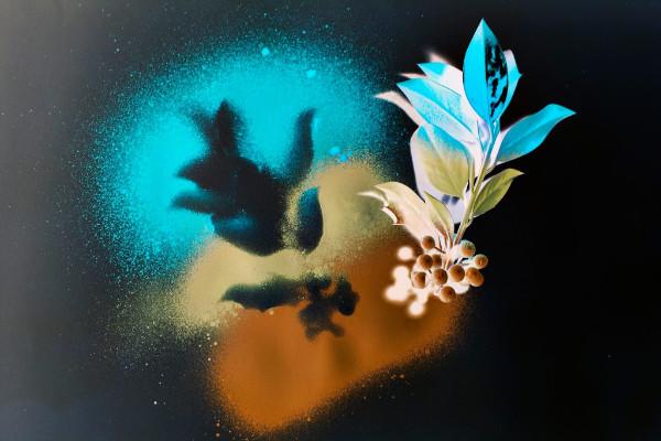 stencil-artwork